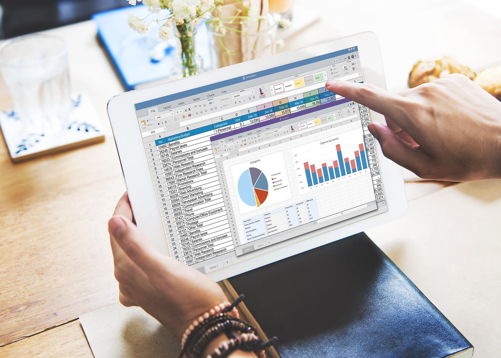 financial management business software